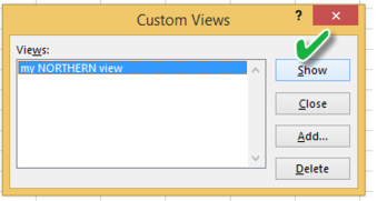 Customised view in Excel.2